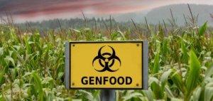 gmo_crops_genfood_735_350-400x190