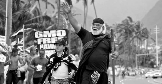 hawaiians_against_gmo_720_375