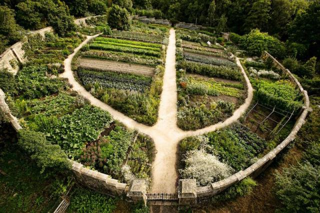 permaculture1