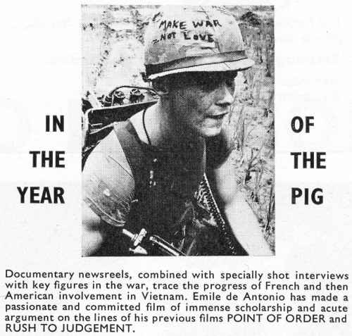 in-the-year-of-the-pig1